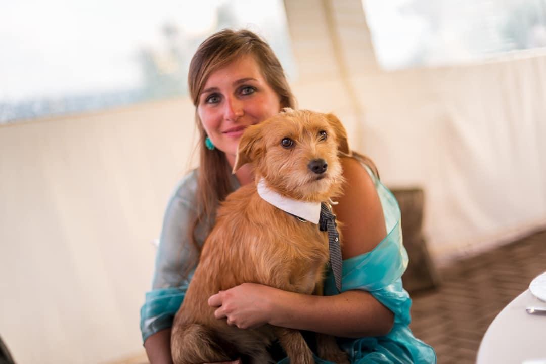 portare animali al matrimonio