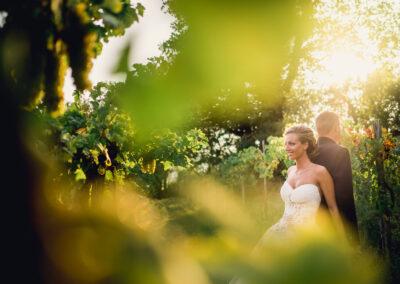 matrimonio zemono