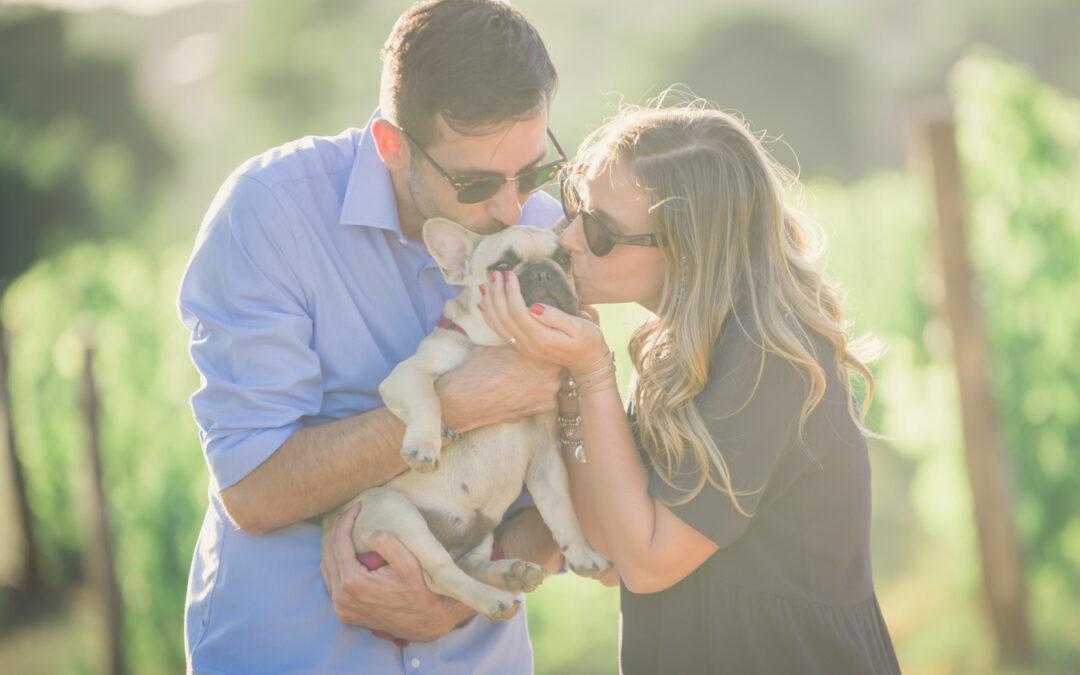 E+T – Prematrimoniali con il cane